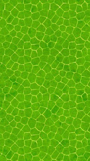 1080x1920 Background HD Wallpaper 157 300x533 - Motorola Moto Z Play Wallpapers