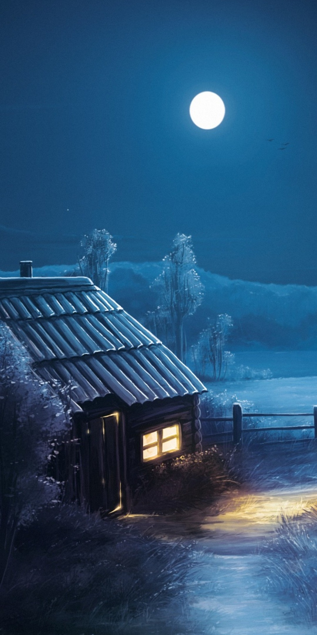 1080x2160 Background HD Wallpaper