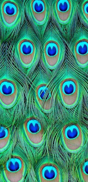 1080x2240 Background HD Wallpaper 244 300x622 - 1080x2240 Wallpapers