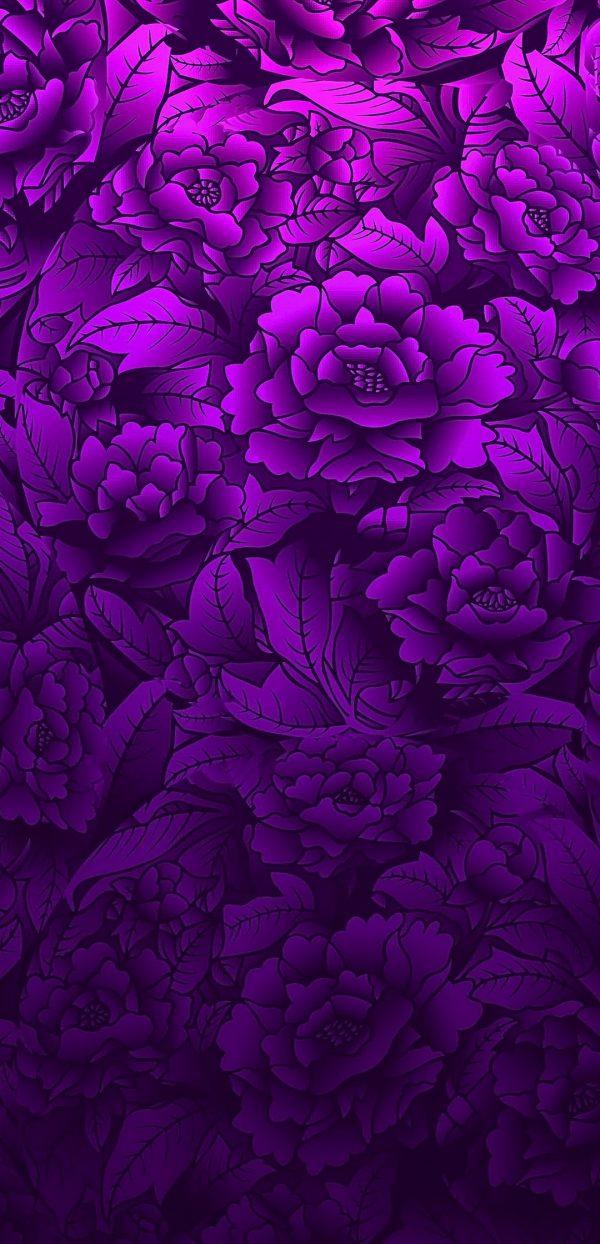 1080x2240 Background HD Wallpaper 250