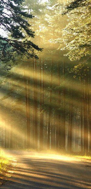 1080x2248 Background HD Wallpaper 136 300x624 - 1080x2248 Wallpapers
