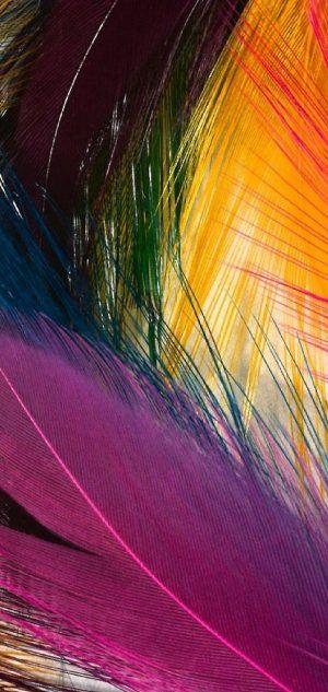 1080x2280 Background HD Wallpaper 250 300x633 - Motorola Moto G7 Plus Wallpapers