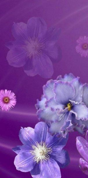 1080x2400 HD Wallpaper 305 303x610 - Samsung Galaxy A51 Wallpapers