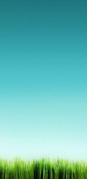 1440x2960 Background HD Wallpaper 311 300x617 - Samsung Galaxy S9+ Wallpapers
