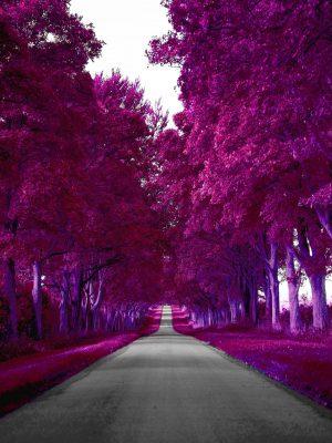 1668x2224 Background HD Wallpaper 077 300x400 - 1668x2224 Wallpapers