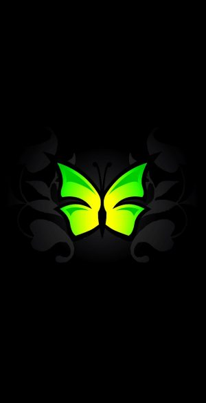 Amoled Butterfly Wallpaper 300x585 - Oppo Reno 4 Wallpapers