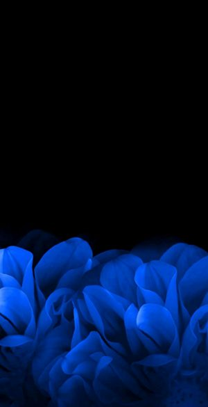Amoled Dark Wallpaper HD Phone 18 300x585 - Blue Wallpapers