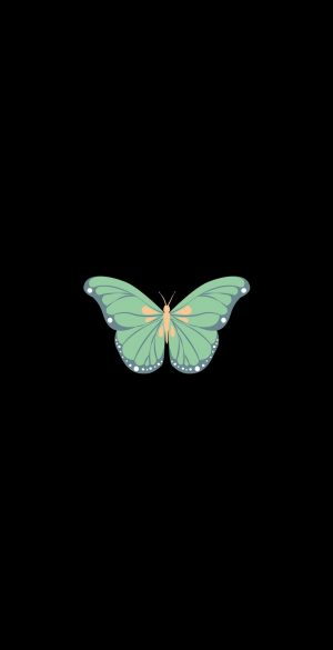 Butterfly Amoled Black Wallpaper 300x585 - OnePlus 9R Wallpapers