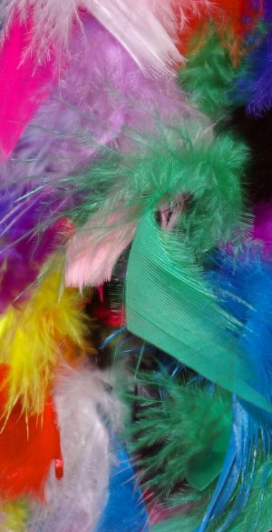 Colorful Feathers Wallpaper 300x585 - Xiaomi Poco F3 Wallpapers