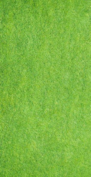 Grass Background Wallpaper 300x585 - Xiaomi Poco F3 Wallpapers