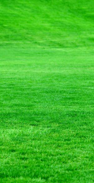 Grass land Wallpaper 300x585 - Xiaomi Poco F3 Wallpapers