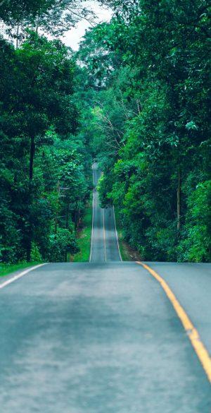 Green Trees Road Wallpaper 300x585 - Xiaomi Poco F3 Wallpapers