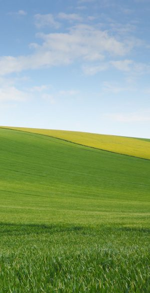 Landspace Grass Wallpaper 300x585 - Xiaomi Poco F3 Wallpapers