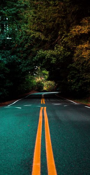 Road way nature Wallpaper 300x585 - Nature Wallpapers