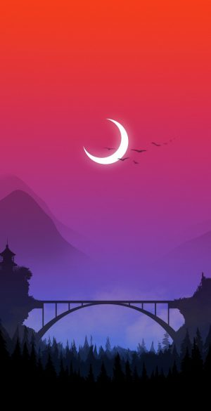 Vector Colorful Sky Phone Wallpaper 300x585 - 1080x2400 Wallpapers