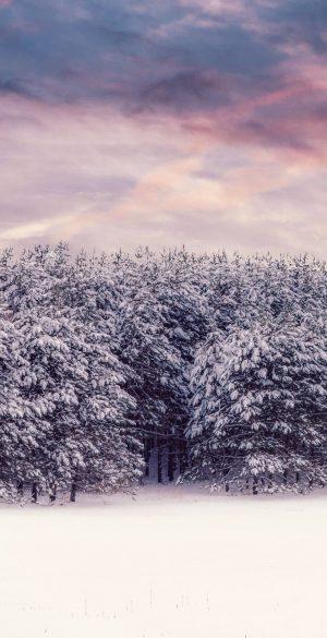 Winter Snow Wallpaper 300x585 - Realme 7 Pro Wallpapers