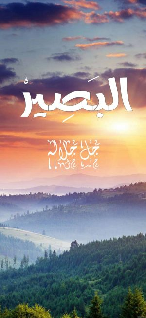 Albaseer Islamic Wallpaper 300x650 - Quotes iPhone Wallpapers