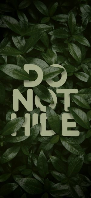 Do Not Hide Wallpaper 1080x2340 300x650 - Motivational Wallpapers