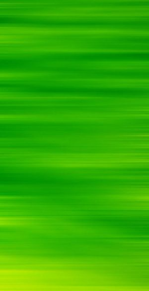 Green Background Phone Wallpaper 03 300x585 - Green Wallpapers