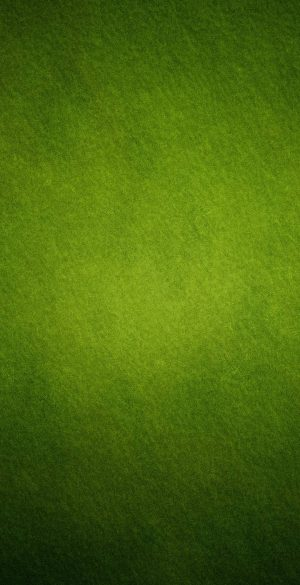 Green Background Phone Wallpaper 15 300x585 - iPhone Green Wallpapers