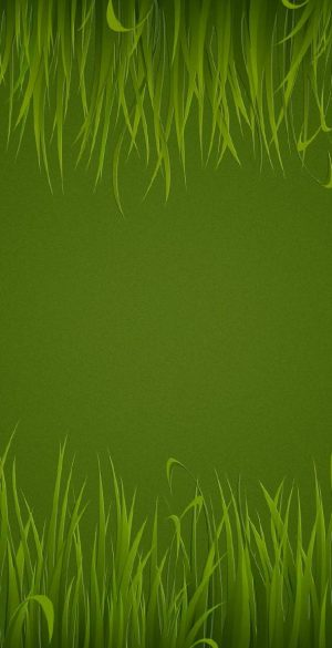 Green Background Phone Wallpaper 23 300x585 - Green Wallpapers