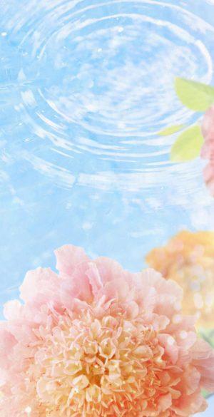 1440x3200 HD Wallpaper 098 300x585 - 1440x3200 HD Wallpaper - 099