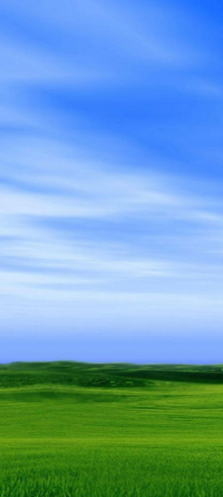 1440x3200 HD Wallpaper 16 768x1707 - 1440x3200 HD Wallpaper - 16