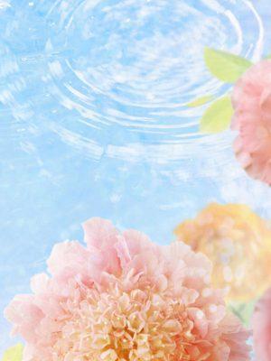 iPad Wallpaper HD 294 300x400 - iPad Wallpaper HD - 295
