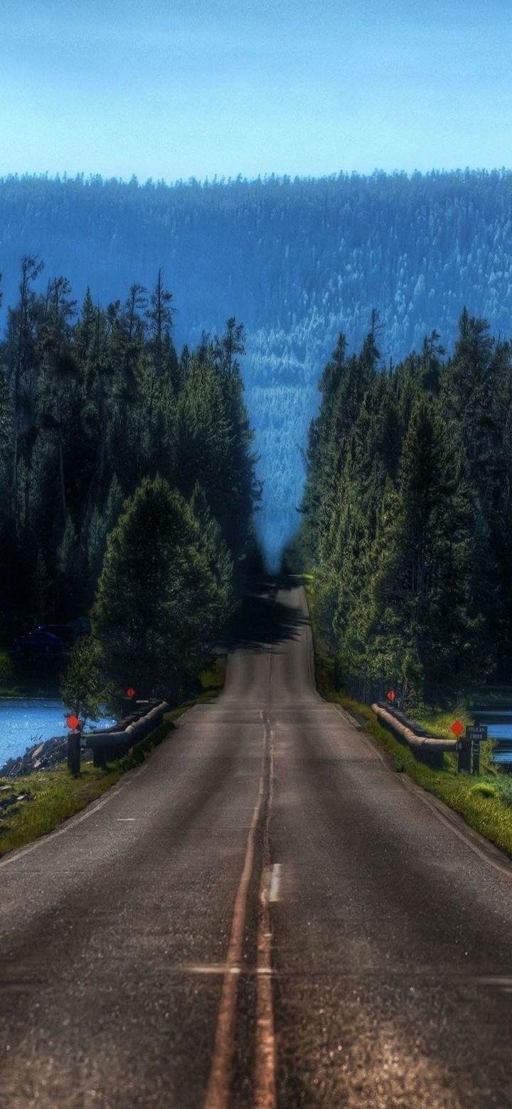 Nature Road Phone Wallpaper - Nature Road Phone Wallpaper