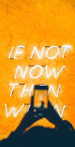 Neon Phone Wallpaper 59 300x585 - Neon Wallpapers
