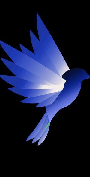 Vector Bird Wallpaper 054 300x585 - Blue Wallpapers
