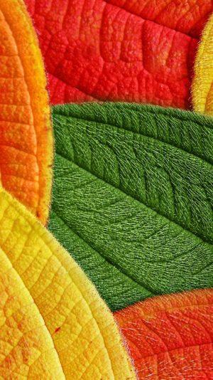 750x1334 Background HD Wallpaper 135 300x534 - 750x1334 Wallpapers