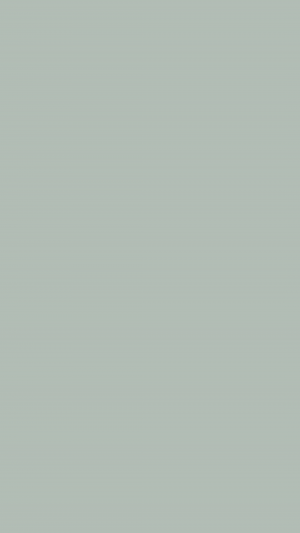 Ash Grey Solid Color Background Wallpaper for Mobile Phone 300x533 - Solid Color Wallpapers