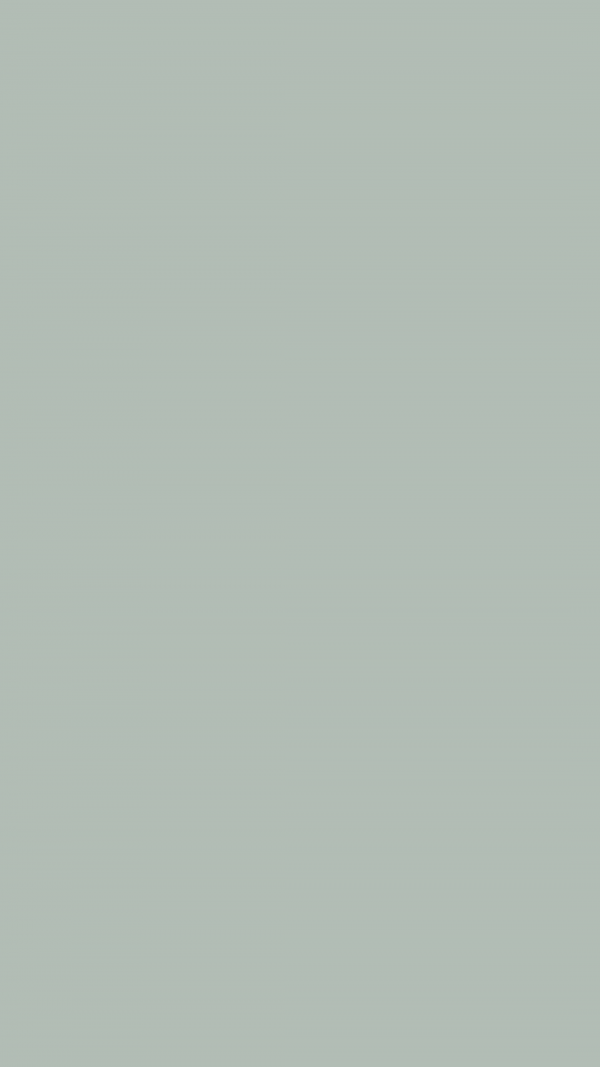 Ash Grey Solid Color Background Wallpaper for Mobile Phone 600x1067 - Ash Grey Solid Color Background Wallpaper for Mobile Phone