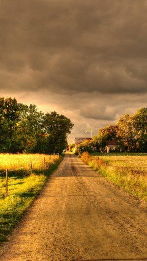 Autumn Field Road Landscape Wallpaper 1080x1920 300x533 - Nature Wallpapers