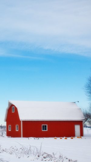 Barn Winter Sky Tree Wallpaper 1080x1920 300x533 - Nature Wallpapers