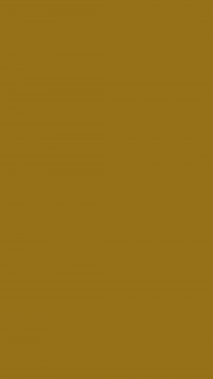 Bistre Brown Solid Color Background Wallpaper for Mobile Phone 300x533 - Solid Color Wallpapers