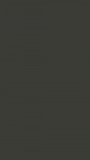 Black Olive Solid Color Background Wallpaper for Mobile Phone 300x533 - Black Solid Color Background Wallpaper for Mobile Phone