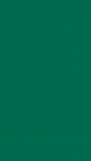 Bottle Green Solid Color Background Wallpaper for Mobile Phone 300x533 - Solid Color Wallpapers