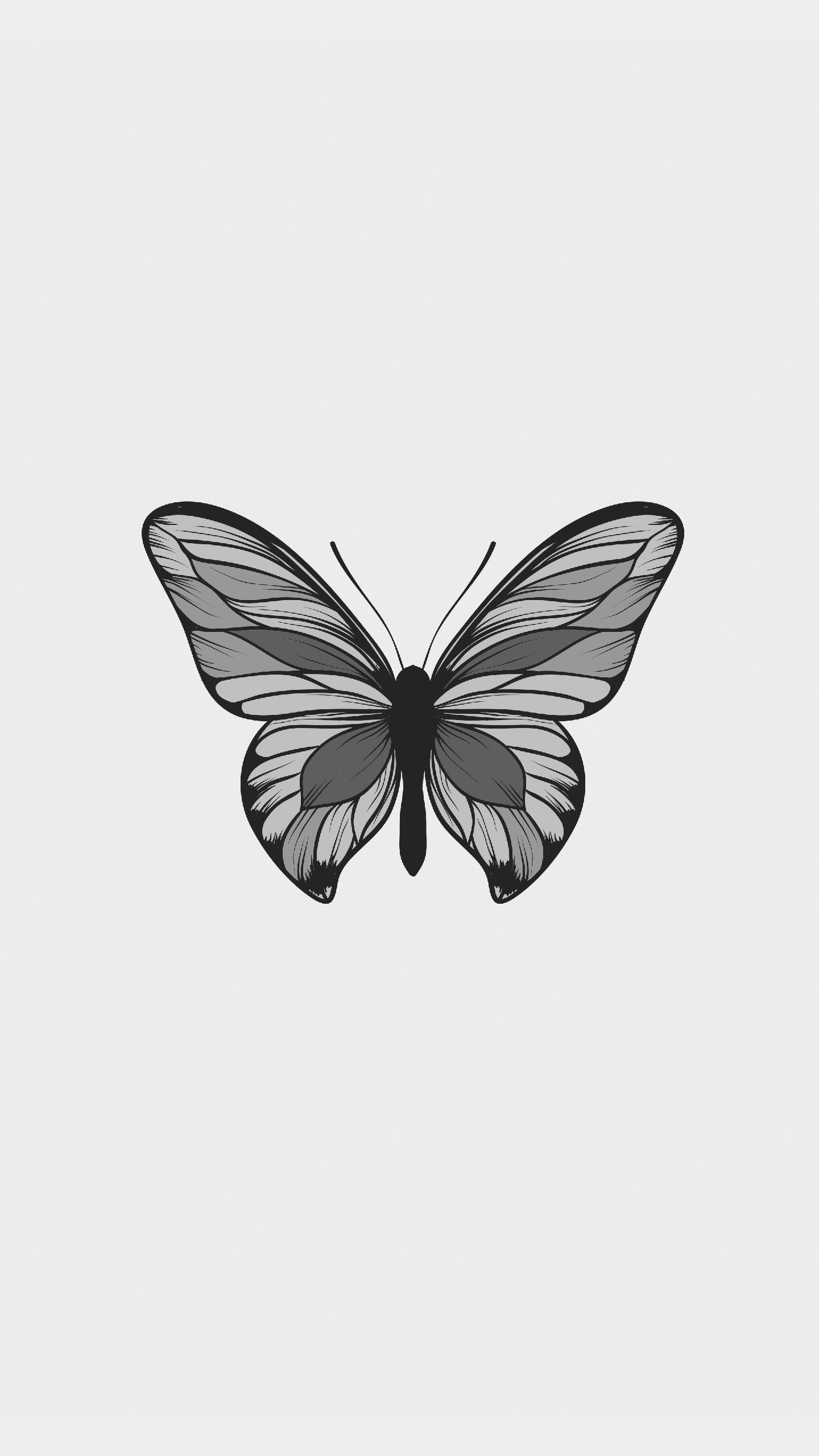 Butterfly Minimal Background Hd Wallpaper 025