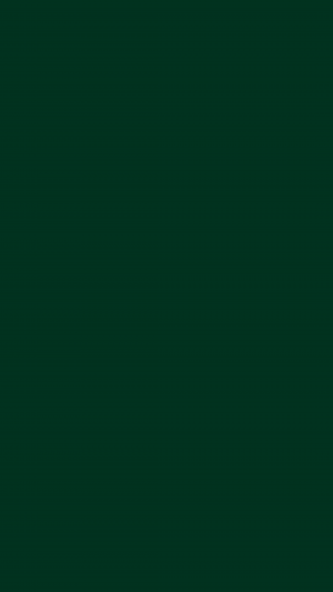 Dark Green Solid Color Background Wallpaper for Mobile Phone 300x533 - Solid Color Wallpapers