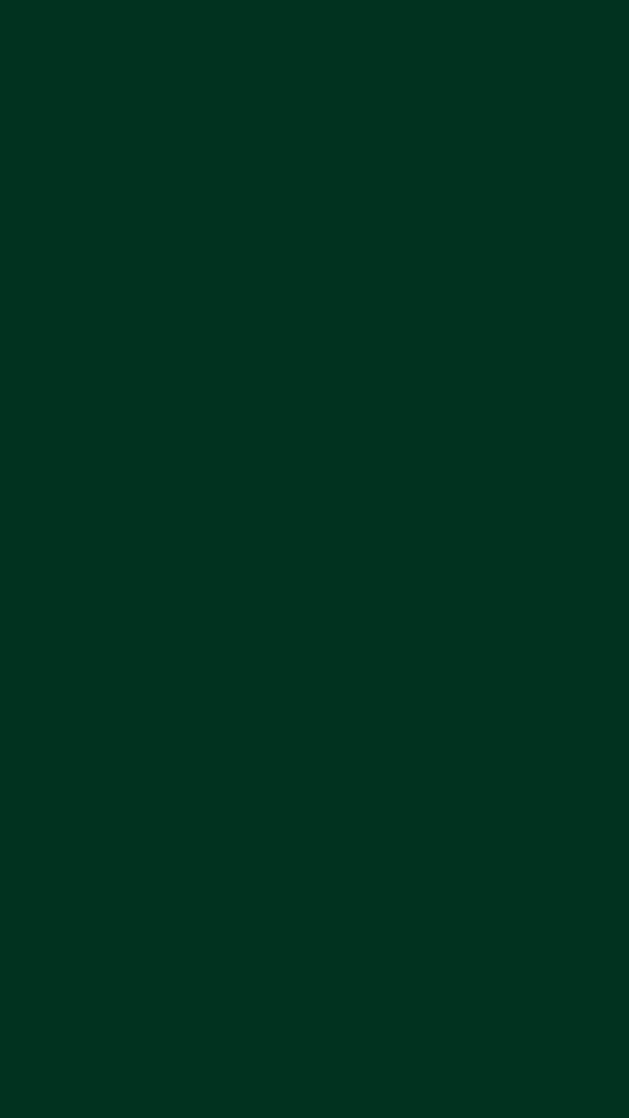 Dark Green Solid Color Background Wallpaper For Mobile Phone
