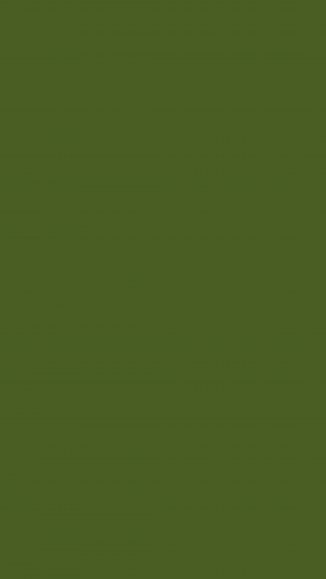 Dark Moss Green Solid Color Background Wallpaper for Mobile Phone 300x533 - Solid Color Wallpapers