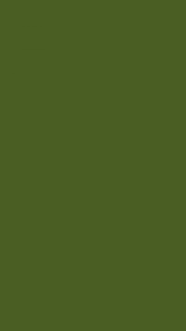 Dark Moss Green Solid Color Background Wallpaper for Mobile Phone 600x1067 - Dark Moss Green Solid Color Background Wallpaper for Mobile Phone