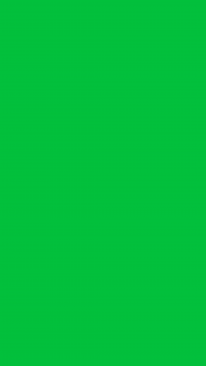 Dark Pastel Green Solid Color Background Wallpaper for Mobile Phone 300x533 - Solid Color Wallpapers