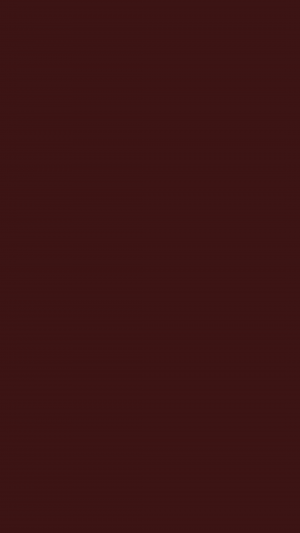 Dark Sienna Solid Color Background Wallpaper for Mobile Phone 300x533 - Solid Color Wallpapers