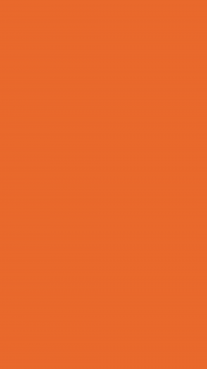 Deep Carrot Orange Solid Color Background Wallpaper for Mobile Phone 300x533 - Solid Color Wallpapers
