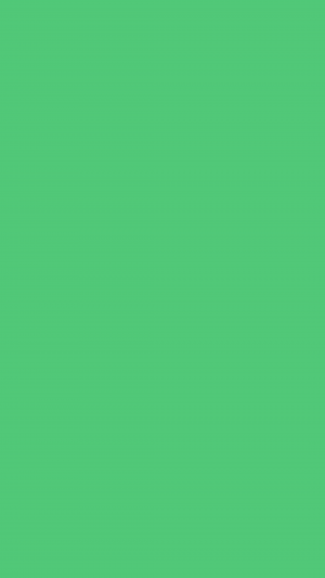 Emerald Solid Color Background Wallpaper for Mobile Phone 300x533 - Dark Pastel Green Solid Color Background Wallpaper for Mobile Phone