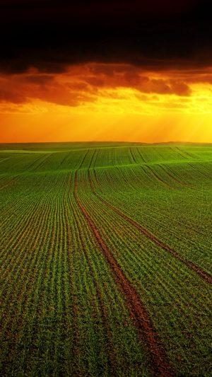 Field Clouds Horizon Wallpaper 1080x1920 300x533 - Nature Wallpapers