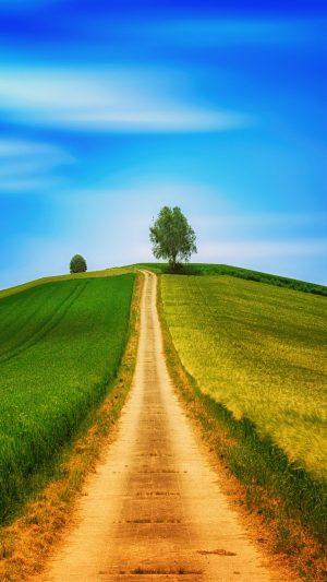 Field Grass Summer 121477 Wallpaper 1080x1920 300x533 - Nature Wallpapers